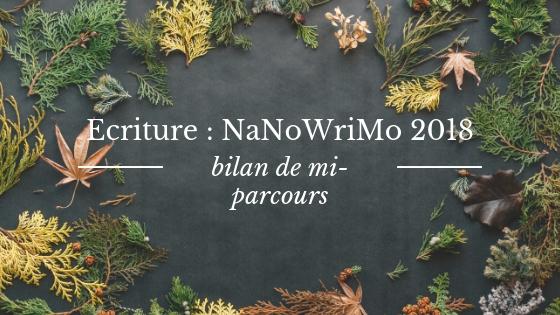 Ecriture : bilan de mi-parcours du nanowrimo 2018