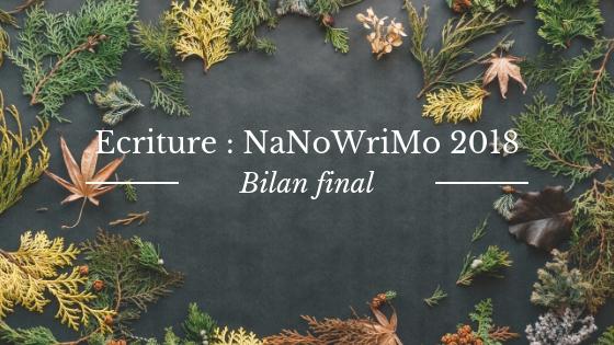 Bilan final du NaNoWriMo 2018