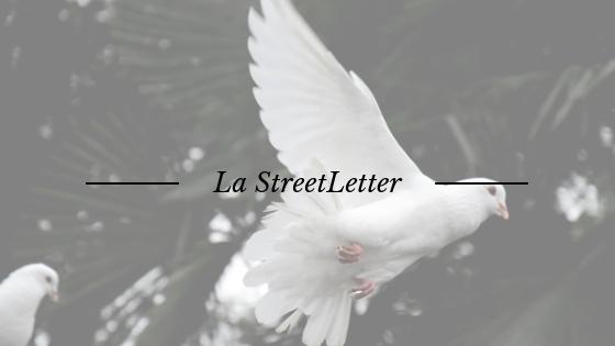 Abonnez-vous à ma lettre d'information, la StreetLetter