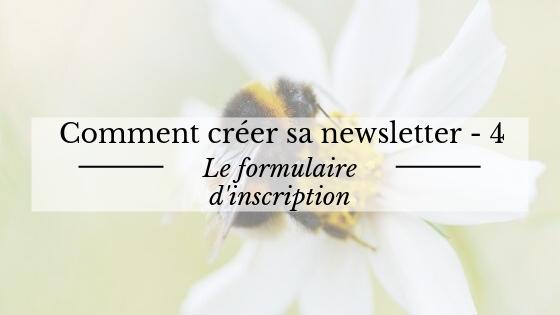 Comment créer sa newsletter : le formulaire d'inscription